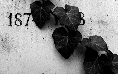 Sírkő/Tombstone 2015