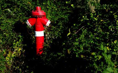 Tűzcsap/Fire hydrant 2016